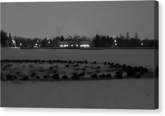 Geese In Frozen Lake Canvas Print