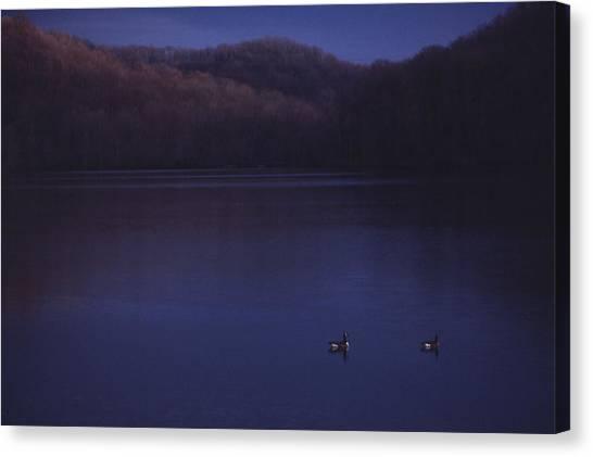 Geese On Radnor Lake Canvas Print by Randy Muir