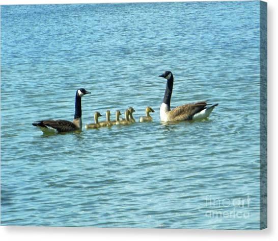 Geese Proud Parents Canvas Print