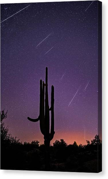 Geminid Meteor Shower #1, 2017 Canvas Print
