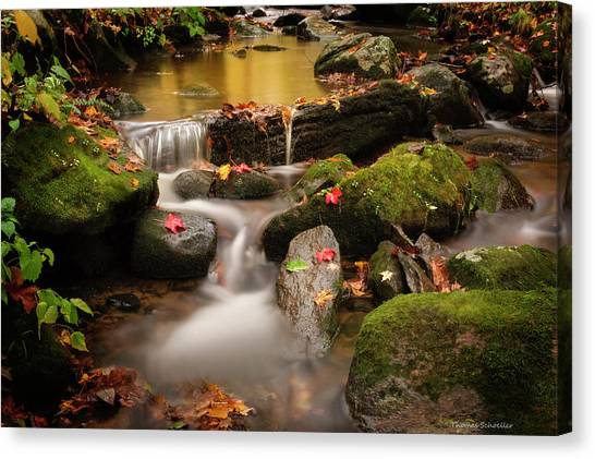 Gentle Cascades Of Autumn  Canvas Print