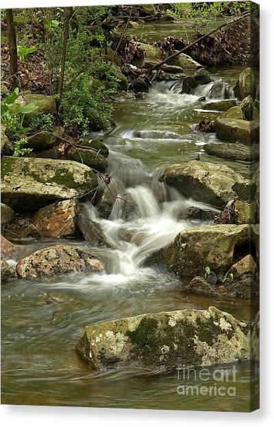 Gentle Falls Canvas Print
