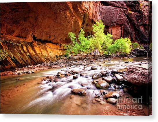 Gentle Flow Canvas Print