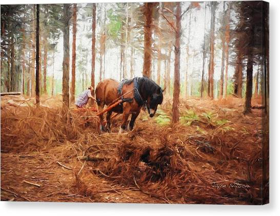 Gentle Giant - Horse At Work In Forest Canvas Print