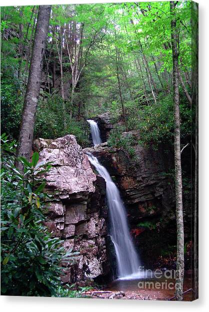 Gentry Creek - Double Falls Canvas Print