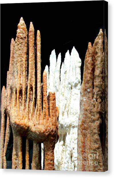 Stalagmites Canvas Print - Geology by Randall Weidner