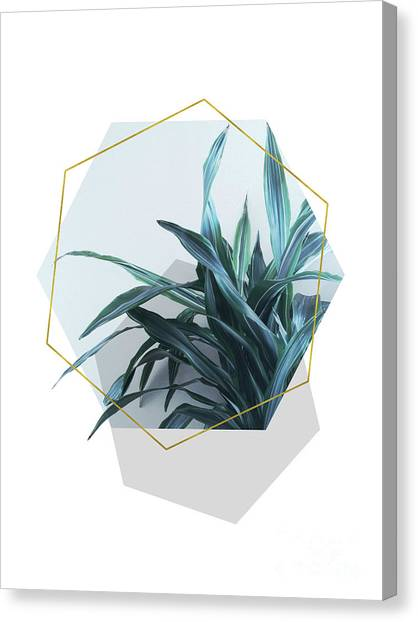 Geometric Jungle Canvas Print