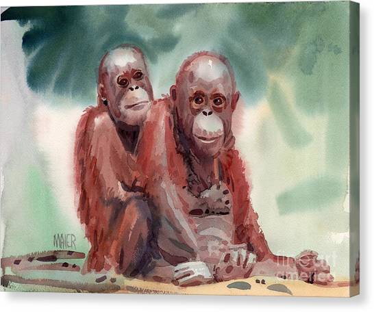 Orangutans Canvas Print - George And Gracy by Donald Maier