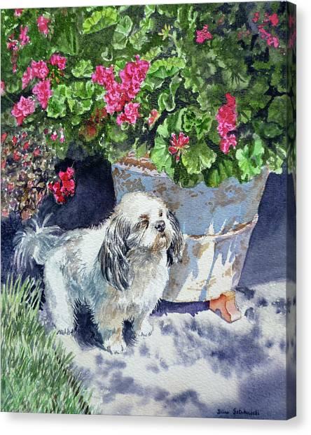 Watercolor Pet Portraits Canvas Print - Georgie by Irina Sztukowski