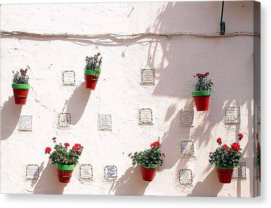 Geraniums Ganging Up Canvas Print by Jez C Self