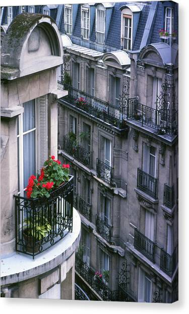 Geraniums - Paris Canvas Print