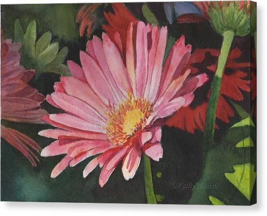 Gerbera Daisy Canvas Print by Kathy Nesseth