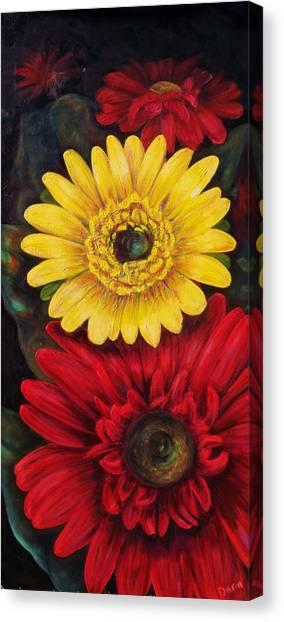 Gerbera Canvas Print by Dana Redfern