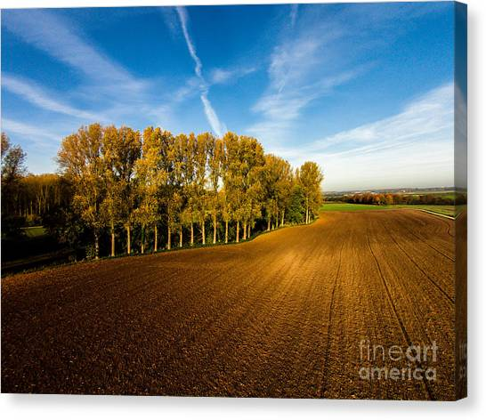Fields From Above Canvas Print