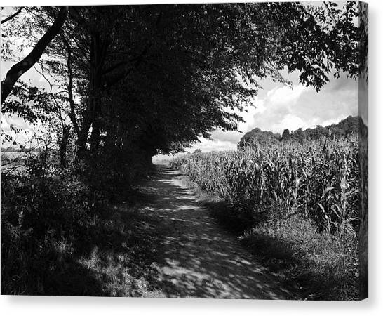 German Path Black And White Canvas Print by Edward Myers