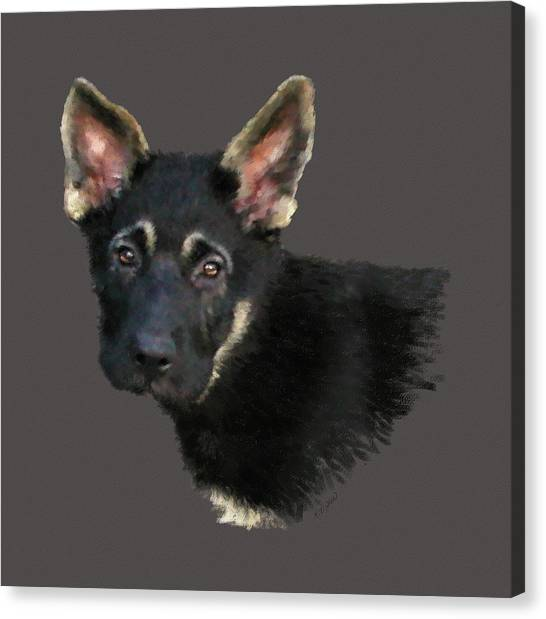 German Shepard Puppy Canvas Print