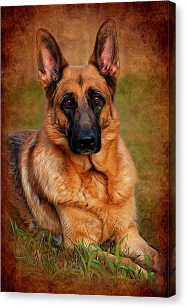 German Shepherds Canvas Print - German Shepherd Dog Portrait  by Angie Tirado