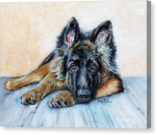 German Shepherds Canvas Print - German Shepherd by Portraits By NC