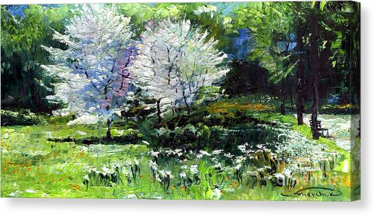 German Canvas Print - Germany Baden-baden Spring 2 by Yuriy Shevchuk