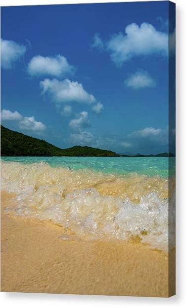 Snorkling Canvas Print - Getting In  by Greg Wyatt