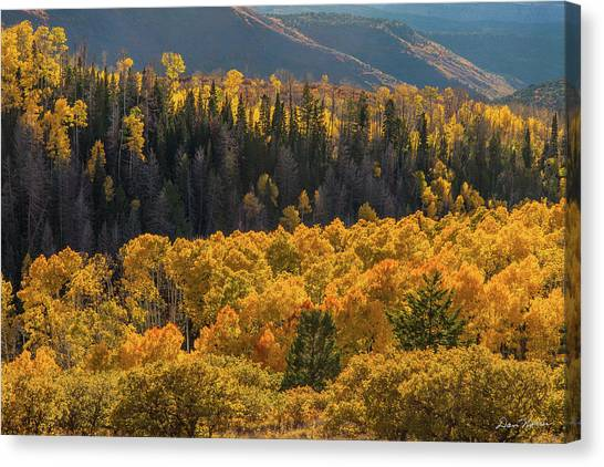 Geyser Pass Road, La Sal Mountains Canvas Print