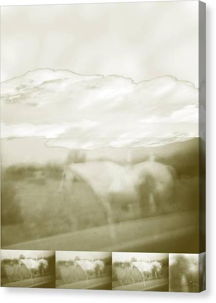 Ghost Horse Colorado Canvas Print