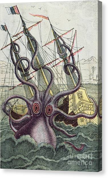 Squids Canvas Print - Giant Octopus by Denys Montfort