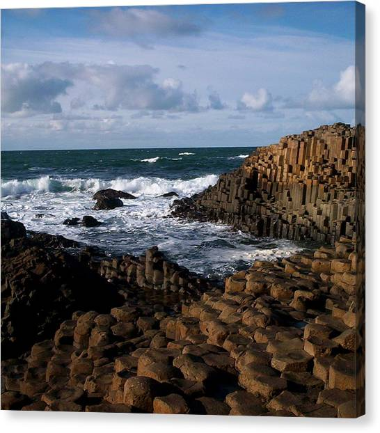 Giant's Causeway Canvas Print by Tess Haun