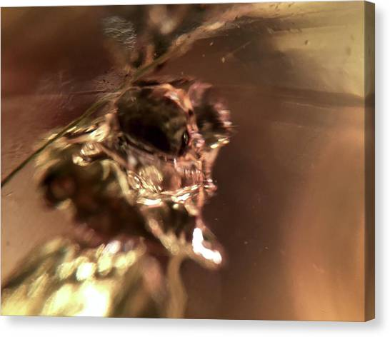 Giger Flower, A Monster Canvas Print