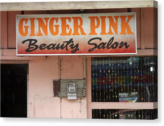 Ginger Pink Canvas Print by Jez C Self
