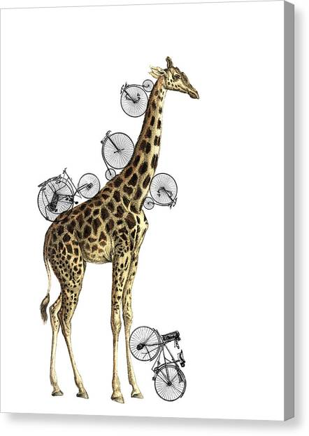 Media Canvas Print - Giraffe And Bicycles by Madame Memento