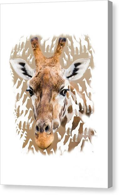 Hoodie Canvas Print - Giraffe Clothing And Wall Art by Linsey Williams