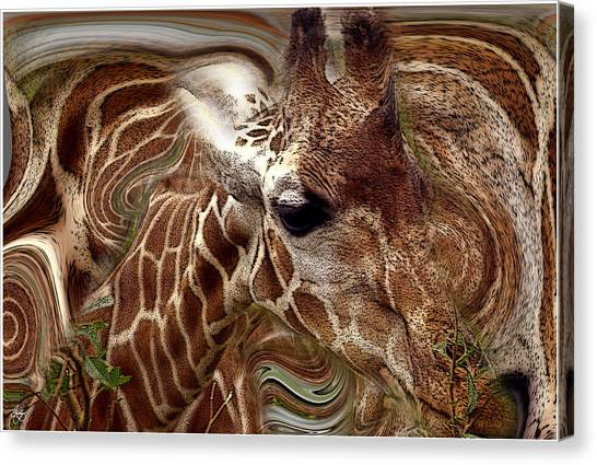 Giraffe Dreams No. 1 Canvas Print
