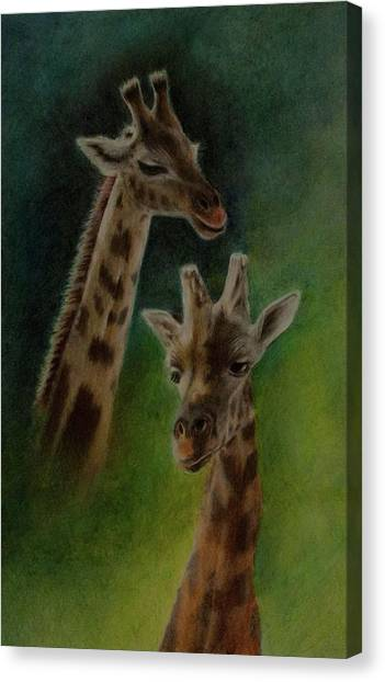 Giraffe Giraffe Canvas Print