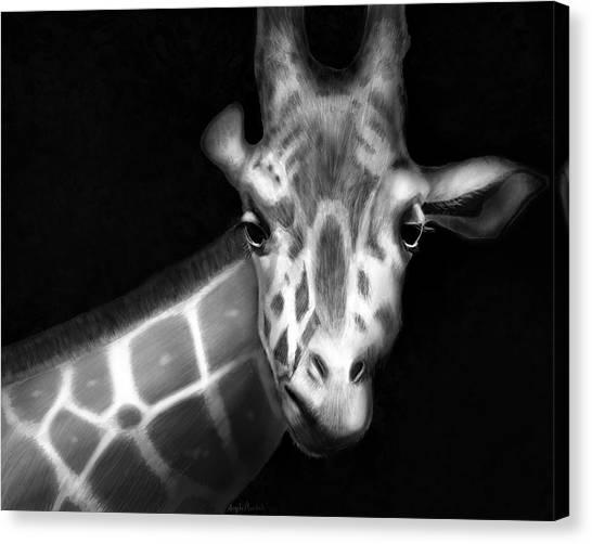 Giraffe In Black And White Canvas Print