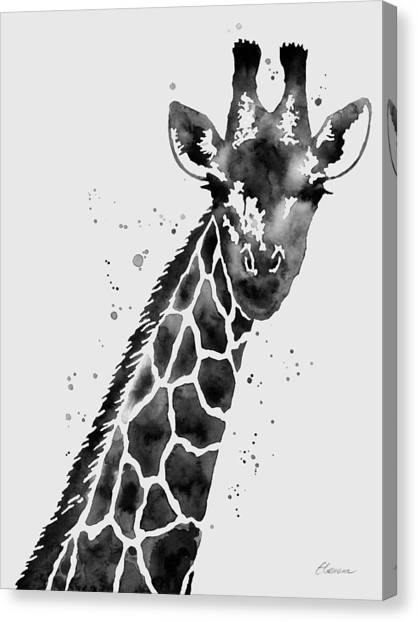 Tall Canvas Print - Giraffe In Black And White by Hailey E Herrera