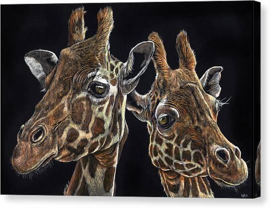 Giraffe Pair Canvas Print