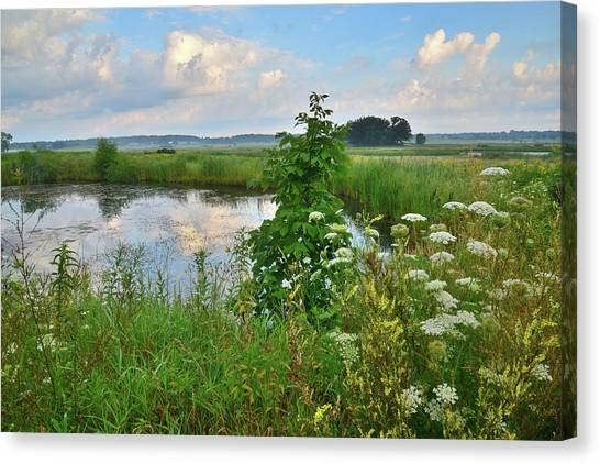 Prairie Sunrises Canvas Print - Glacial Park Pond by Ray Mathis