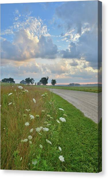 Prairie Sunrises Canvas Print - Glacial Park Road by Ray Mathis