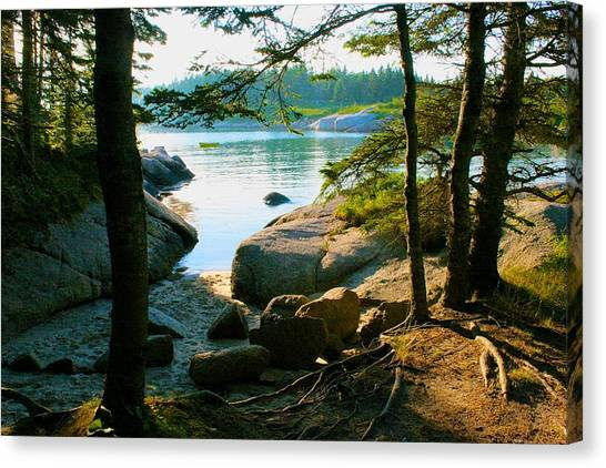 Glade To The Side Of Sand Beach Canvas Print
