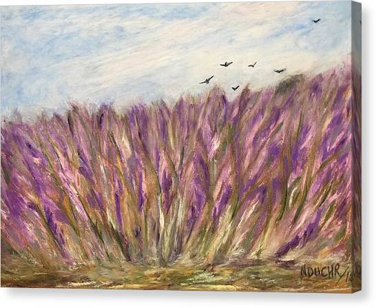 Gladiolus Field Canvas Print