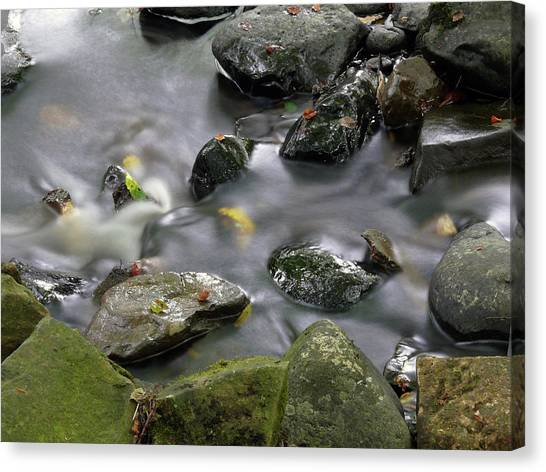 Glenariff River Canvas Print