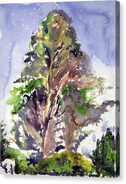Glendalough Tree Canvas Print