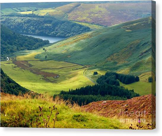 Glendalough Valley, County Wicklow Canvas Print