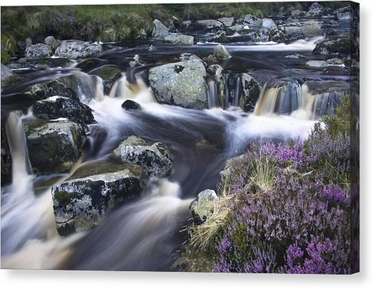 Glenmacnass I Canvas Print by Gary Rowe