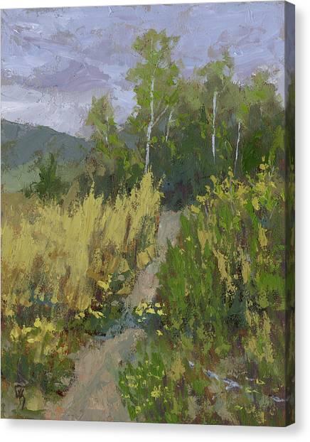 Gloomy Day Hike Canvas Print