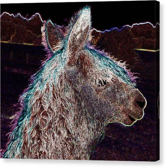Glowing Alpaca Canvas Print