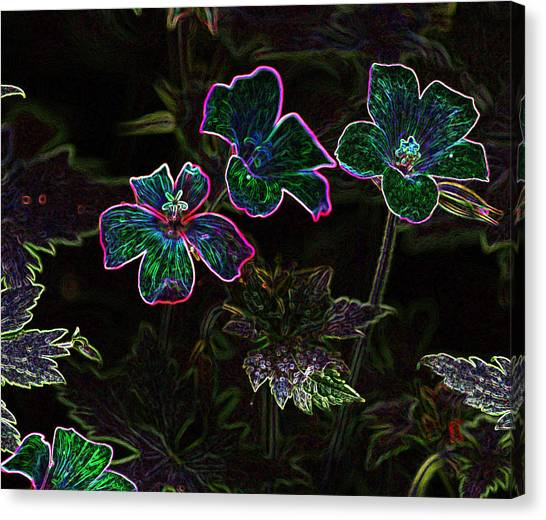Glowing Flowers Canvas Print by Scott Gould