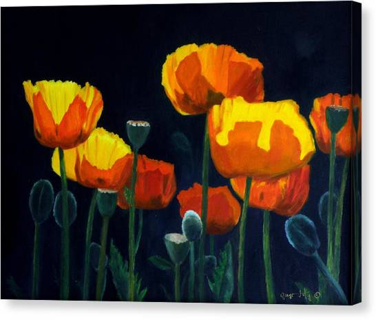 Glowing Poppies Canvas Print