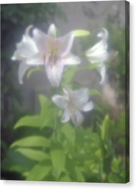 Glowing Spring Canvas Print